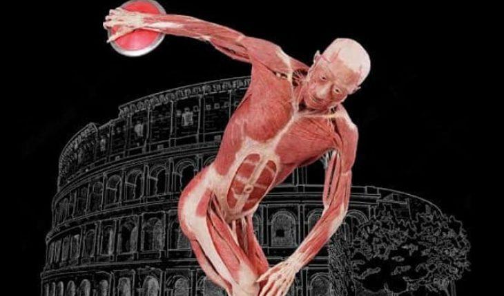 la mostra real bodies a roma
