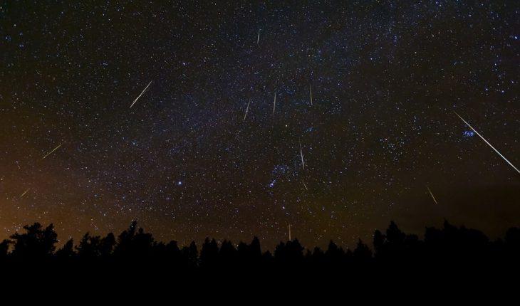 notte delle stelle cadenti al foro romano