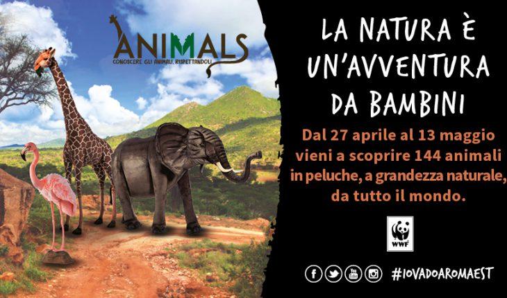 Eventi Roma Est