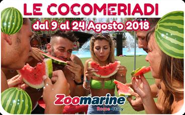 estate zoomarine