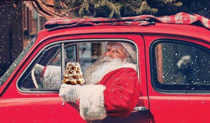 Pandorino Christmas Festival
