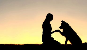 Animali da compagnia fedeli amici degli esseri umani